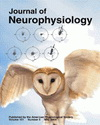 cover page image from J Of neurophysiology